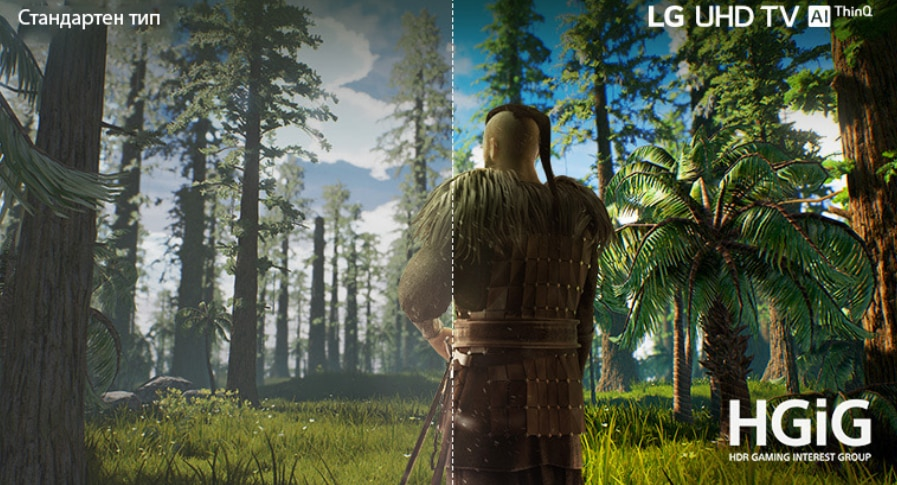 Телевизор LG 43UN81003LB
