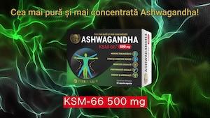 ashwagandha ksm 66 pierdere în greutate