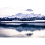 Картина Startonight DualView Ледена епоха, светлина в тъмнотo, 20 x 30 см