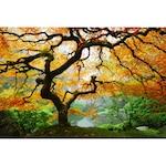 Картина Startonight DualView Есенен клен, светлина в тъмнотo, 80 x 120 см