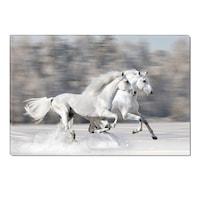 Декоративно пано DualView Startonight, Бели коне, Светещо в тъмното, 70 x 100 см
