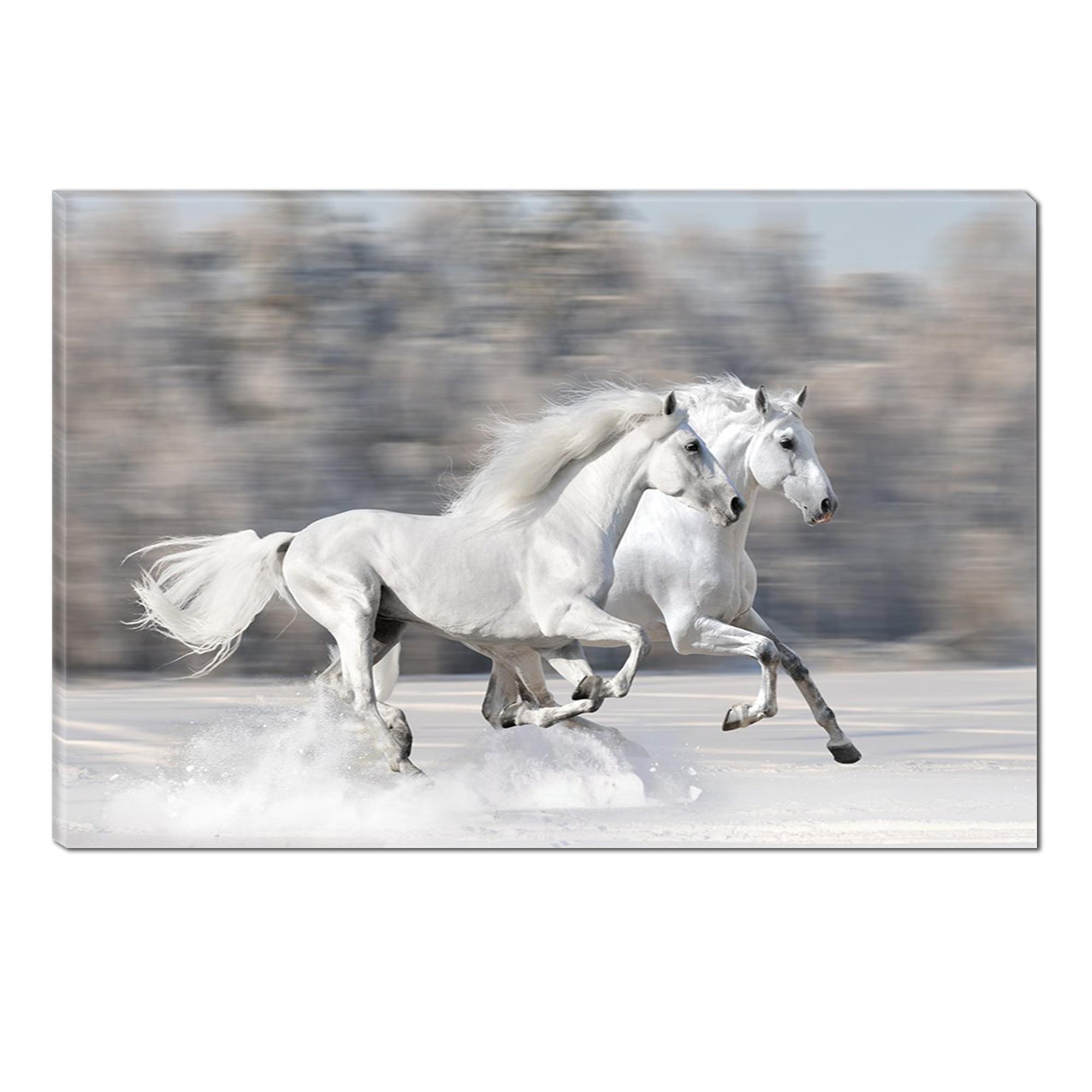 Fotografie Tablou DualView Startonight Cai Albi, Animale, Luminos in intuneric, 70 x 100 cm