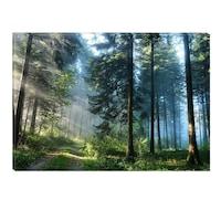 Декоративно пано DualView Startonight, Гора, Светещо в тъмното, 70 x 100 см