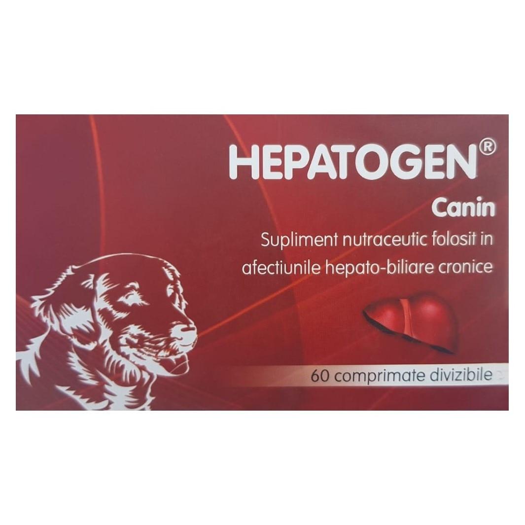 suplimente de detoxifiere pentru câini)