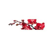 Гръб за Кухня DEGRETS 91550 Орхидея 11, 61 cm x 2.80 m х 6 mm