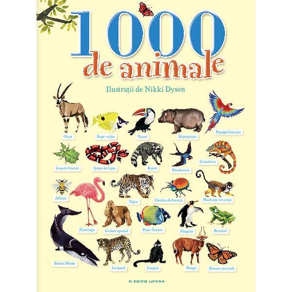 Animale ANIMALE Washington