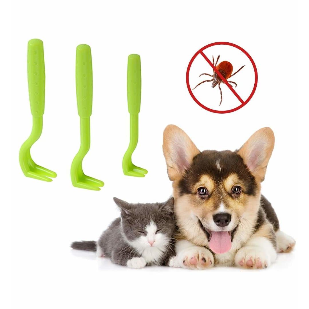 dispozitive parazitare