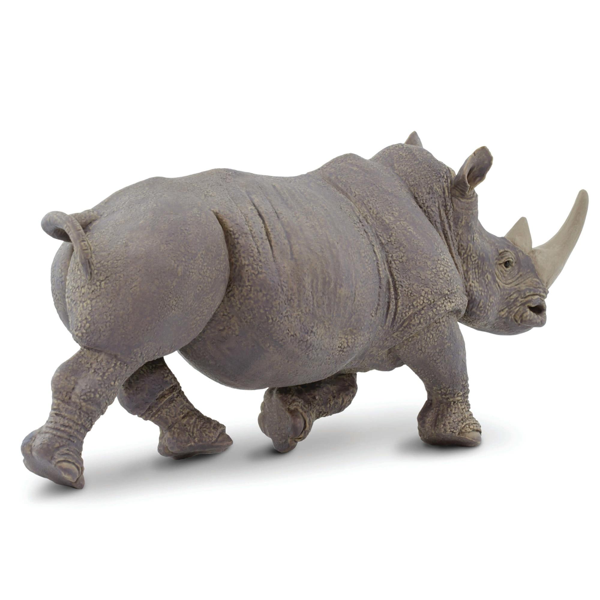 Rinocer la cai Sudan, ultimul rinocer alb mascul, a murit. Avea 45 de ani și era foarte bolnav