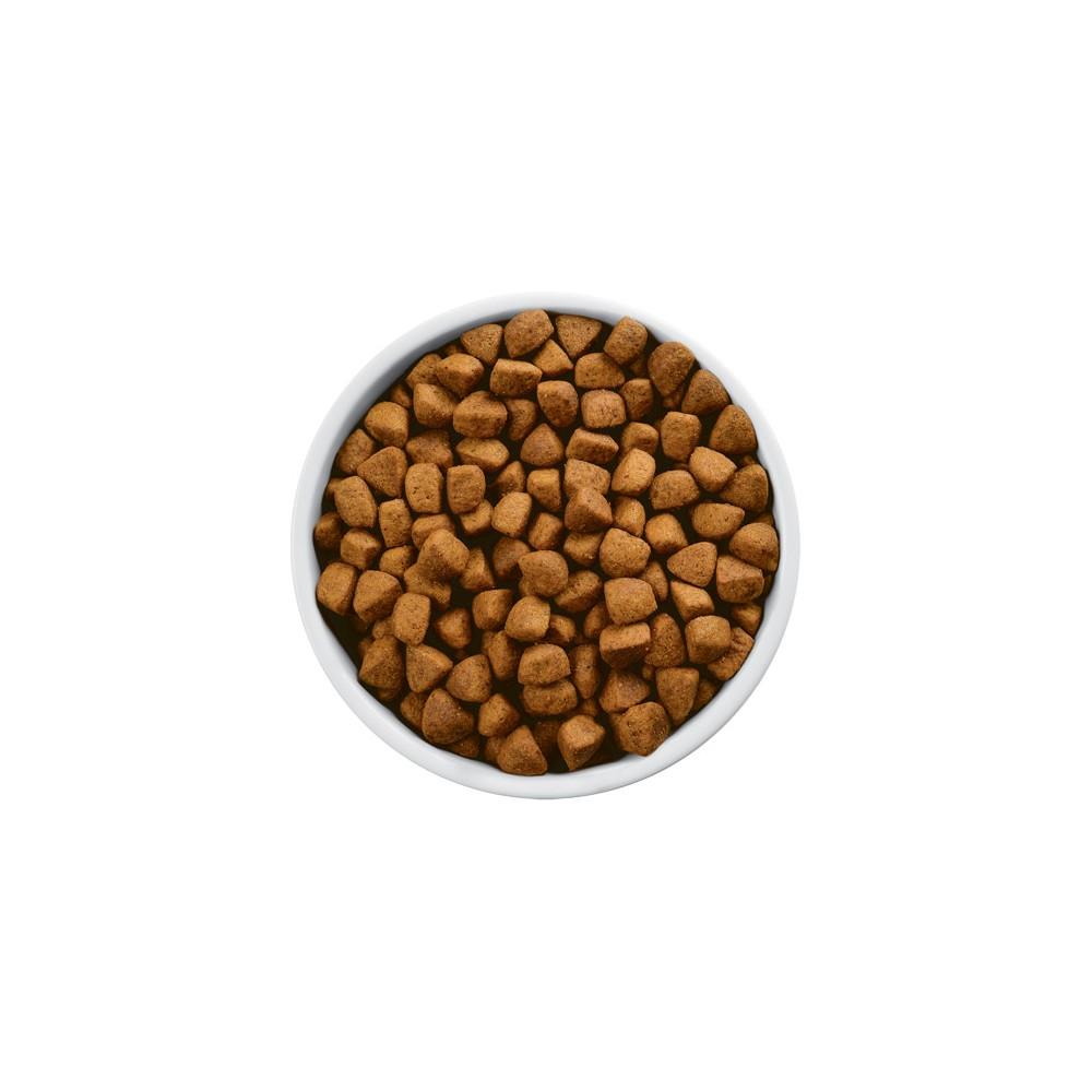 Hill's Prescription Diet Canine r/d Mini Weight Reduction : cumpără ieftin   dressingpuzzlestore.ro