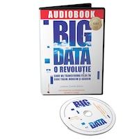 Big Data: O revolutie care va transforma felul in care traim, muncim si gandim - Audiobook