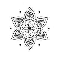 birou notarial lotus