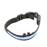 Светеща кучешка каишка,ProCart, LED, размер S 34-44 см, регулируема, 3 режима на осветяване, текстури, синьо