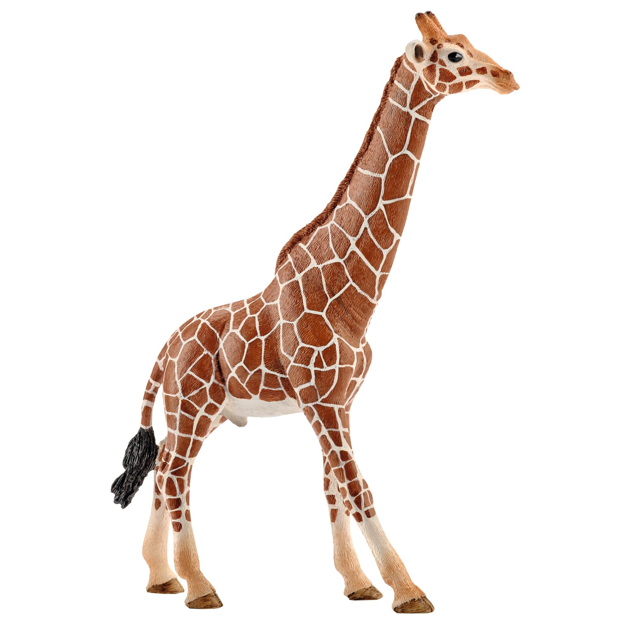 Fotografie Figurina Schleich, Girafa mascul