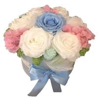 Trandafiri criogenati , Carolyne Optim Services, Multicolor, 20 cm
