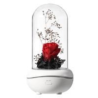 lampa rosie