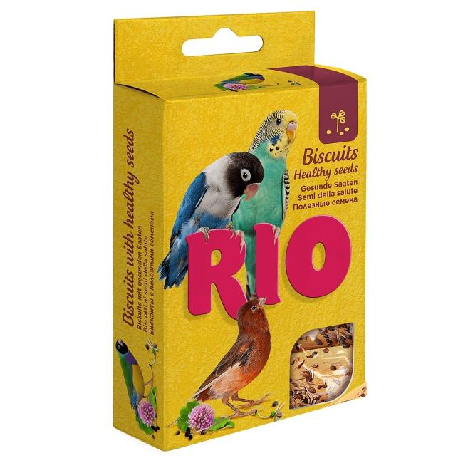 cum să faci bani cu păsări bogate cât de realist este să câștigi bani pe recenziile de opțiuni binare