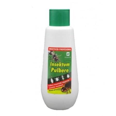 Practici domestice împotriva insectelor. Înțepăturile de insecte - Revista Galenus