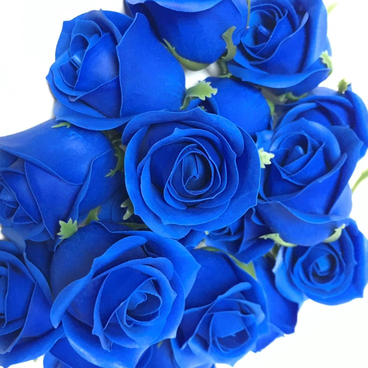Cautarea femeilor in trandafiri Fontenay- AUX
