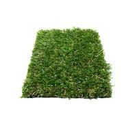 covor wet grass