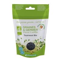pat germinativ pentru rasaduri