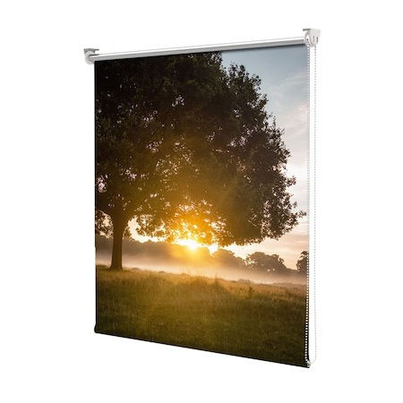 Rolete Art Shade tip Jaluzele cu Rulou si sistem inclus, Peisaj de Toamna cu Dimineata in poiana, Decoratiuni, Latime 100 cm x Inaltime 250 cm