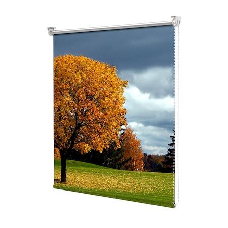 Rolete Art Shade tip Jaluzele cu Rulou si sistem inclus, Peisaj de Toamna cu Coroana copacului in campie, Decoratiuni, Latime 100 cm x Inaltime 250 cm
