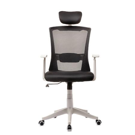 Scaun ergonomic, spatar mesh, Reglaj lombar, Negru/Alb