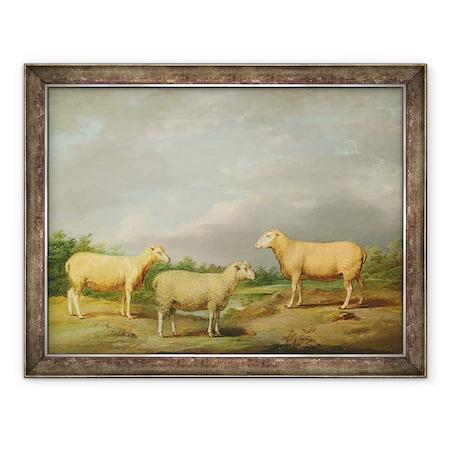 James Ward - Ryelands Sheep, a király kosa, a King juha és Lord Somerville Wetherje, Keretezett kép, 60 x 80 cm