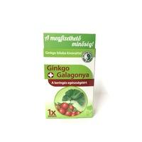 Dr. Chen Gingko Galagonya tea 40g. 30db.