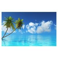 Öntapadó fotótapéta, Pálmafák és óceán, 110x170 cm