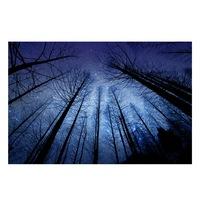 Öntapadó fotótapéta, Csillagos égbolt, 130x200 cm
