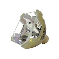 Lampa pentru videoproiector Sony SXR-R320, bulb RTF
