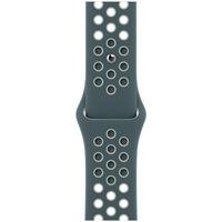 Каишка за Apple Watch 40 мм, Nike Sport Band, Regular, Hasta/Light Silver