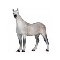 Orlov ügető ló XL
