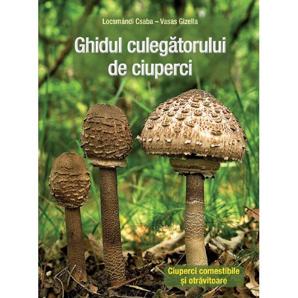 specii de ciuperci comestibile