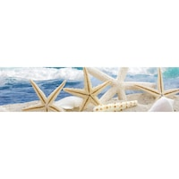 Гръб за Кухня DEGRETS 91039 Морска звезда, 61 cm x 2.44 m х 3 mm