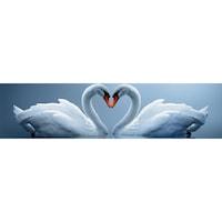 Гръб за Кухня DEGRETS 91000 Лебеди, 61 cm x 2.44 m х 3 mm