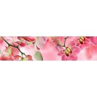 Гръб за Кухня DEGRETS 91040 Орхидея 3, 61 cm x 2.44 m х 3 mm