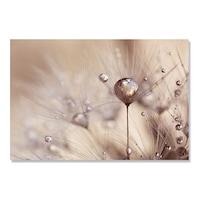 Картинa Канава Artfoyer - Цвете, папая, 80 x 120 см
