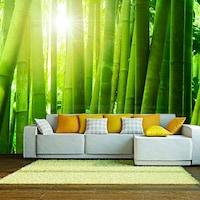 Fotótapéta - Nap és bambusz 350x270
