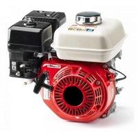motor electric micul fermier